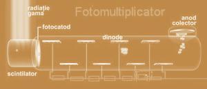 fotomultiplicator