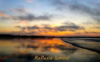 Reflexia totala a luminii
