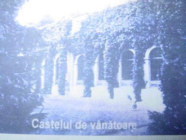 Castelul de vanatoare