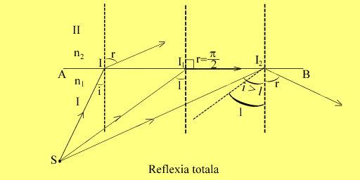 reflexia.totala1